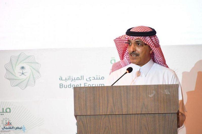 وزير المالية: استراتيجية محددة لإعداد الميزانية وآليات عمل مشتركة بين جميع الجهات الحكومية