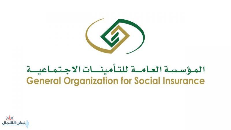 التأمينات: المعاشات التقاعدية لا تتأثر بممارسة الأعمال الحرة