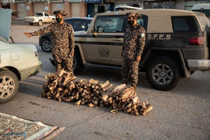 """""""الداخلية"""" تعلن نتائج القبول النهائي لطالبي الالتحاق بالخدمة العسكرية بالقوات الخاصة للأمن البيئي"""