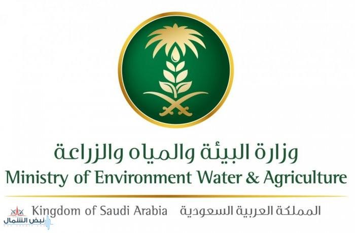 """""""البيئة"""" في إحصائية حديثة: القصيم تنتج 1,225,227 طناً من المنتجات الزراعية"""