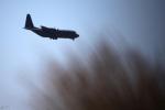 طالبان تتبنى إسقاط طائرة النقل الأميركية