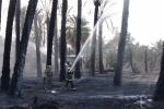 نتيجة نشاط الرياح .. حريق يمتد إلى مزارع أخرى ومدني الجوف يسيطر عليه