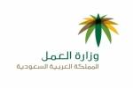 وزارة العمل تبحث تقريب أجور القطاع الخاص بالحكومي