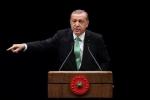 اردوغان يؤكد ان تركيا ستمنح الجنسية لعدد من السوريين
