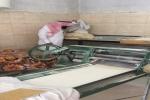 بلدية العيساوية  ممثلة بصحة البيئه تنفذ عدد من الجولات الرقابيه على المحلات