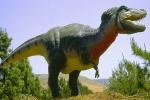 اكتشاف 20 بيضة ديناصور.. وتوقعات بإعادة الكائن الأسطوري للحياة