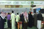 البريد السعودي يشحن 6 أطنان من زيتون الجوف في يومين