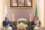"""وزير الداخلية يبحث مع """"المشنوق"""" ملفات إقليمية ودولية"""