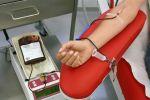 في اليوم العالمي للتبرع بالدم.. تعرف على ما يحدث للدم المبترع به