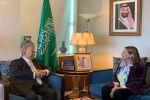 المعلمي يلتقي بالمنسقة المقيمة للأمم المتحدة في المملكة