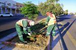 بلدية طبرجل تقوم بحملة نظافة شاملة وسفلتة وتأهيل الشوارع الرئيسية والداخليه في المحافظة