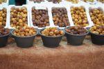 ٦٥ نوعا من التمور في مهرجان التمر والعسل بدومة الجندل أبرزها حلوة الجوف