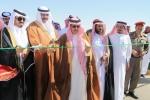 محافظ طبرجل يفتتح مهرجان مقيض الهجن بمحافظة طبرجل.